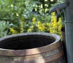 Regenwasser Nutzen mit Auffanganlagen